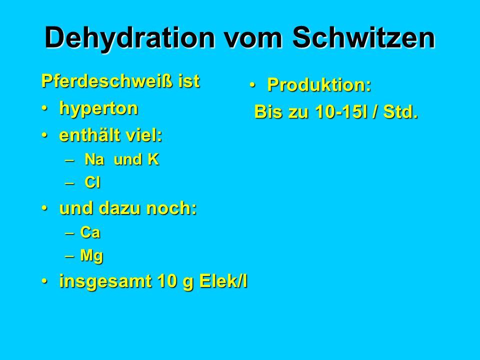 Dehydration vom Schwitzen Pferdeschweiß ist hypertonhyperton enthält viel:enthält viel: – Na und K – Cl und dazu noch:und dazu noch: –Ca –Mg insgesamt 10 g Elek/linsgesamt 10 g Elek/l Produktion:Produktion: Bis zu 10-15l / Std.
