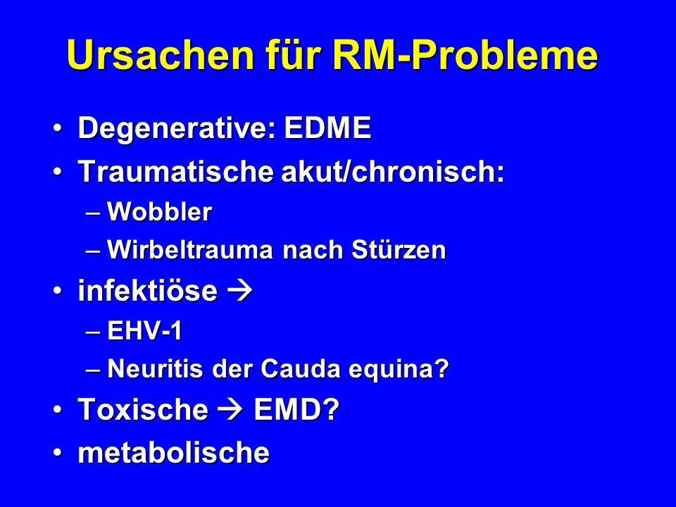 Ursachen für RM-Probleme Degenerative: EDMEDegenerative: EDME Traumatische akut/chronisch:Traumatische akut/chronisch: –Wobbler –Wirbeltrauma nach Stü