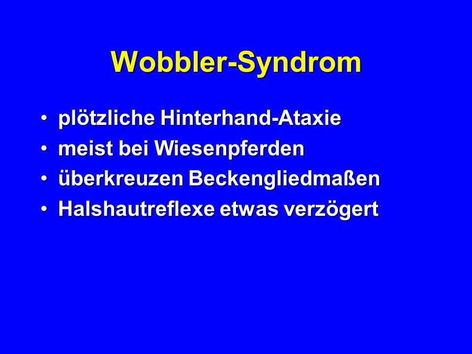 Wobbler-Syndrom plötzliche Hinterhand-Ataxieplötzliche Hinterhand-Ataxie meist bei Wiesenpferdenmeist bei Wiesenpferden überkreuzen Beckengliedmaßenüb