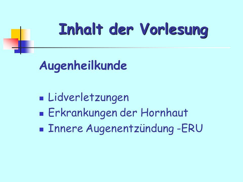 Inhalt der Vorlesung Augenheilkunde Lidverletzungen Erkrankungen der Hornhaut Innere Augenentzündung -ERU
