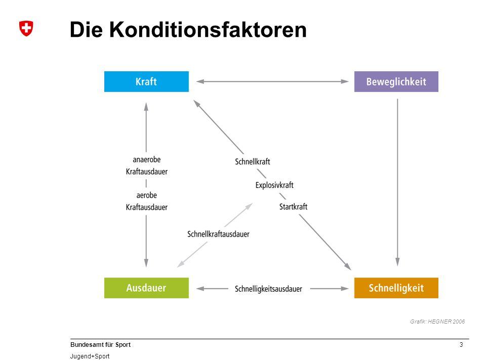 3 Bundesamt für Sport Jugend+Sport Die Konditionsfaktoren Grafik: HEGNER 2006