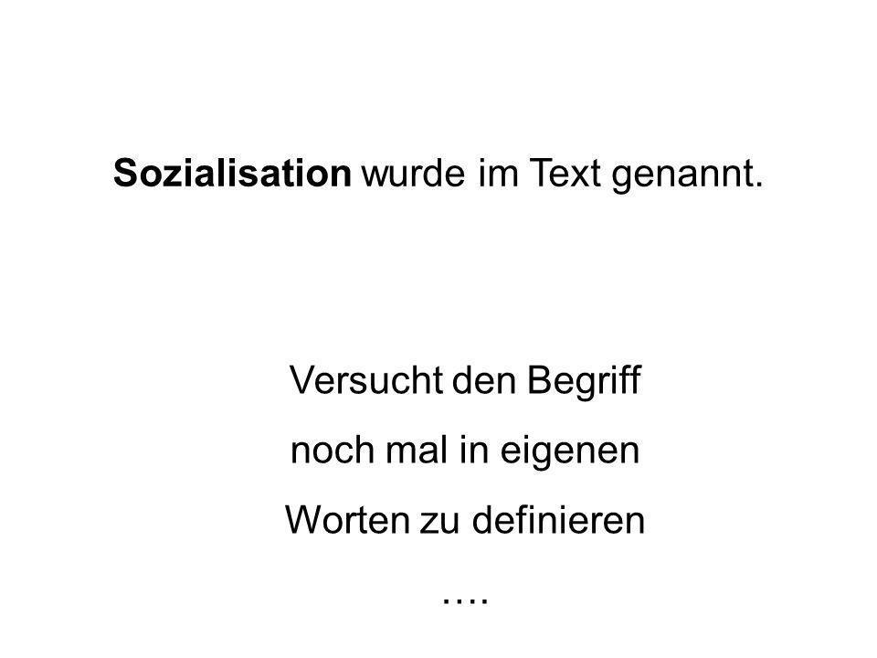 Sozialisation wurde im Text genannt.