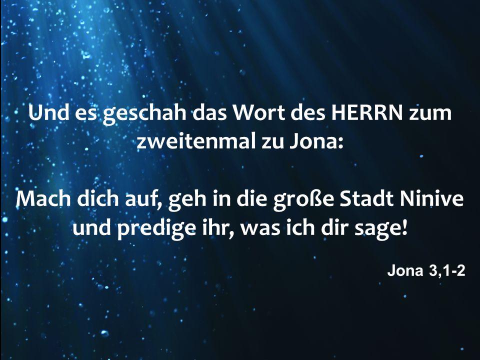 Und es geschah das Wort des HERRN zum zweitenmal zu Jona: Mach dich auf, geh in die große Stadt Ninive und predige ihr, was ich dir sage! Jona 3,1-2