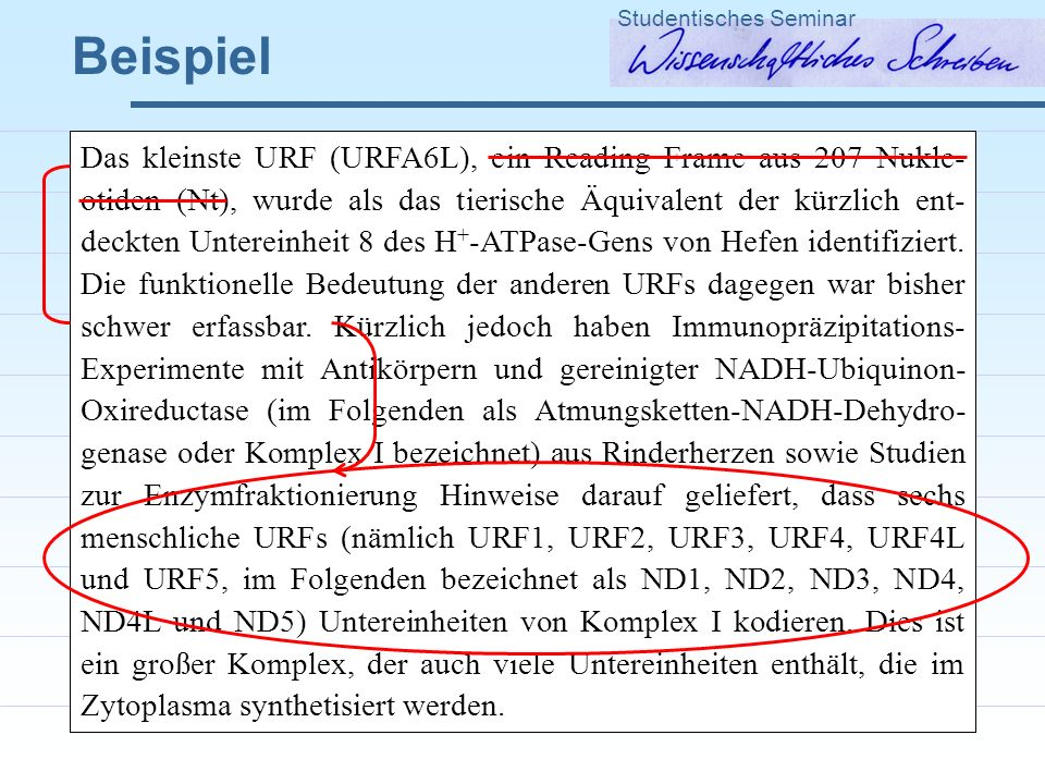 Beispiel Studentisches Seminar Das kleinste URF (URFA6L), ein Reading Frame aus 207 Nukle- otiden (Nt), wurde als das tierische Äquivalent der kürzlich ent- deckten Untereinheit 8 des H + -ATPase-Gens von Hefen identifiziert.
