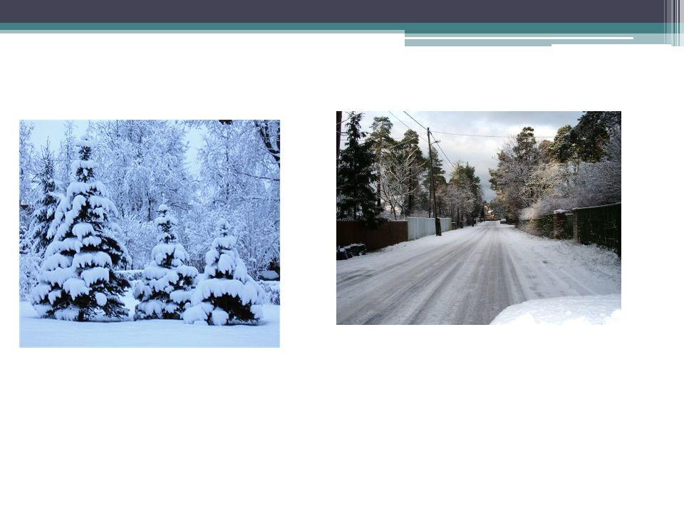 DER WINTER Winter beginnt im Dezember.Oft schneit es und es ist sehr kalt.Die Sonne scheint nicht mehr so oft.Im Winter kann mann Wintersport treiben.Im Winter bauen viele Menschen einen Schneemann und spielen Schneeballschlacht.Ich liebe Winter,weil dann die Natur schön ist.Ich mag den Winter,wenn es kalt ist.Viele Menschen snowboarden im Winter,machen Skispringe,rennrodeln und spielt Eishockey.Schnee ist etwas Wunderschönes Wenn es schneit und die Schneeflocken Häuser,Bäumer und Berge zudecken,sieht die Landschaft wie verzaubert aus.Schneeflocken bestehen aus winzig kleinen,sechseckigen Eiskristallen.Die Hauswart muss Schnee schaufeln.Da die Schneeflocke zum grössten Teil aus Luft besteht,sinkt sie sehr,sehr leicht und langsam zu Boden.Es kann eine ganze Stunde dauern bis sie von der Walke bis zur Erde gefallen ist.Die kinder bauen einen Schneemann.