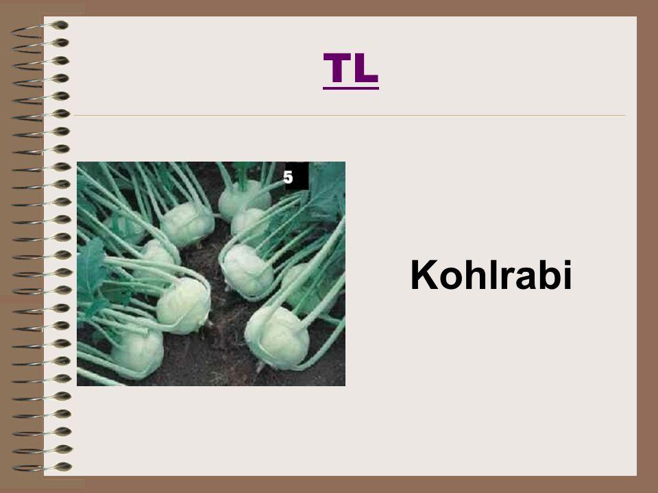 TL Kohlrabi