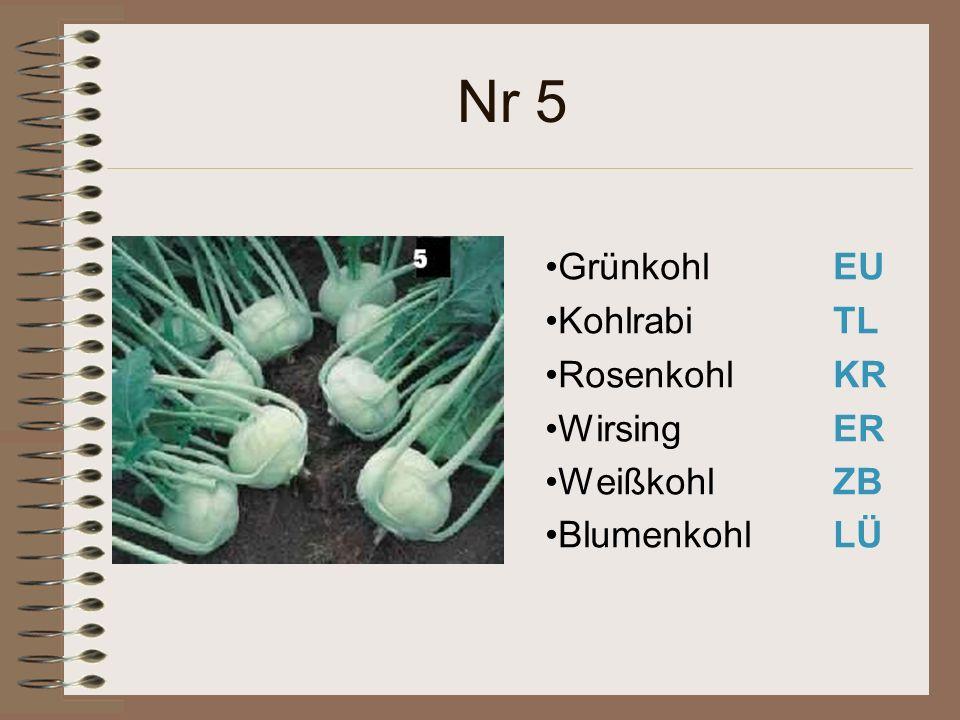 Nr 5 Grünkohl EU Kohlrabi TL Rosenkohl KR Wirsing ER WeißkohlZB BlumenkohlLÜ