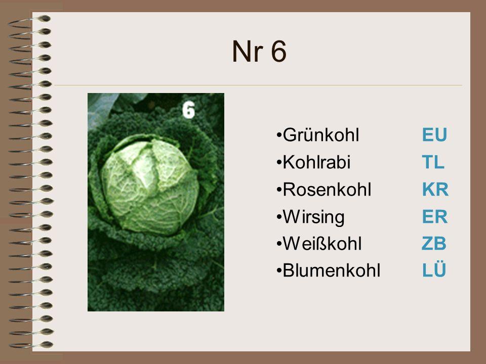 Nr 6 Grünkohl EU Kohlrabi TL Rosenkohl KR Wirsing ER WeißkohlZB BlumenkohlLÜ