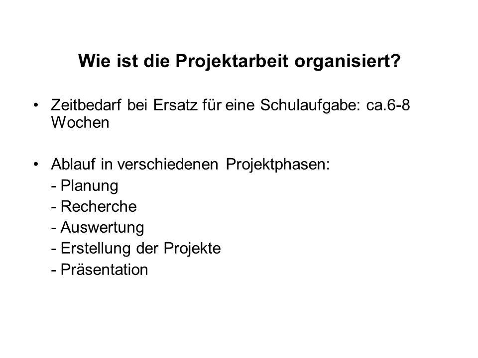 Wie ist die Projektarbeit organisiert.