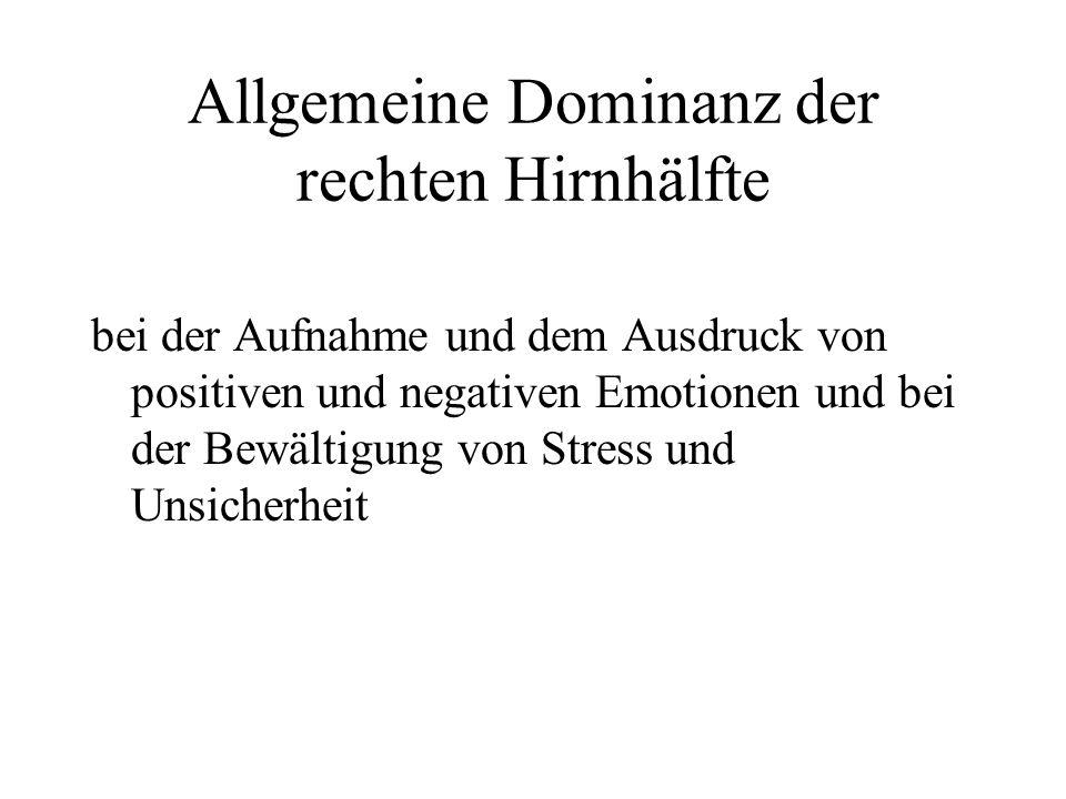 Allgemeine Dominanz der rechten Hirnhälfte bei der Aufnahme und dem Ausdruck von positiven und negativen Emotionen und bei der Bewältigung von Stress und Unsicherheit