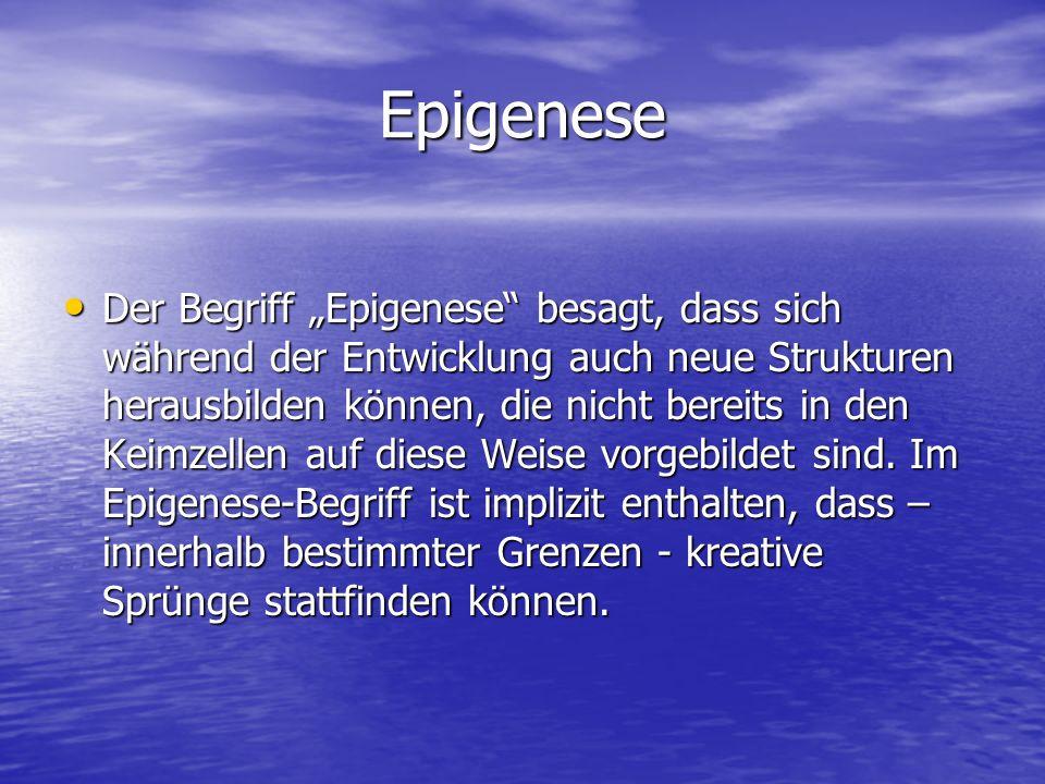 Epigenese Der Begriff Epigenese besagt, dass sich während der Entwicklung auch neue Strukturen herausbilden können, die nicht bereits in den Keimzellen auf diese Weise vorgebildet sind.