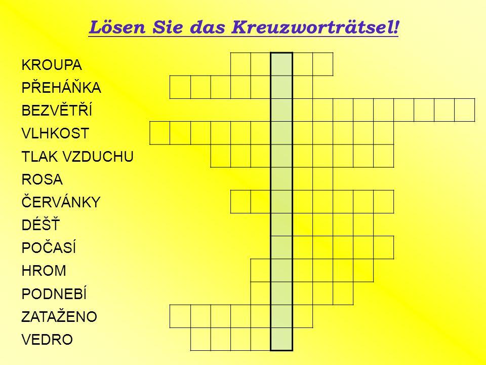 Lösen Sie das Kreuzworträtsel.