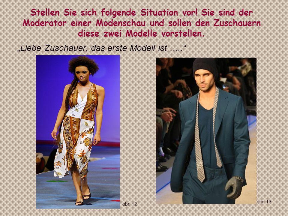 Stellen Sie sich folgende Situation vor! Sie sind der Moderator einer Modenschau und sollen den Zuschauern diese zwei Modelle vorstellen. Liebe Zuscha