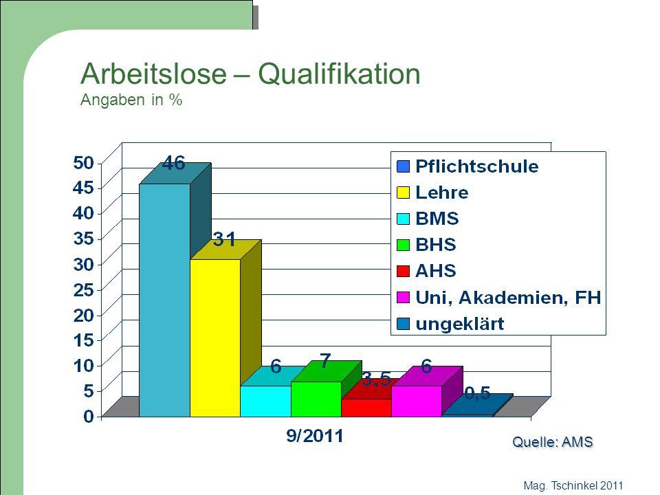 Mag.Tschinkel 2011 Vertiefend: Ein bestehendes Fach zusätzlich wählen.