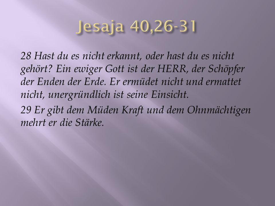 28 Hast du es nicht erkannt, oder hast du es nicht gehört? Ein ewiger Gott ist der HERR, der Schöpfer der Enden der Erde. Er ermüdet nicht und ermatte