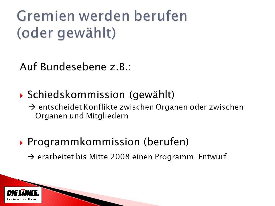 Auf Bundesebene z.B.: Schiedskommission (gewählt) entscheidet Konflikte zwischen Organen oder zwischen Organen und Mitgliedern Programmkommission (berufen) erarbeitet bis Mitte 2008 einen Programm-Entwurf