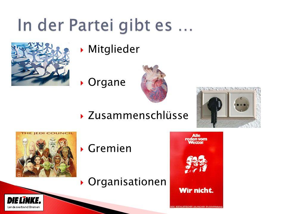 Mitglieder Organe Zusammenschlüsse Gremien Organisationen