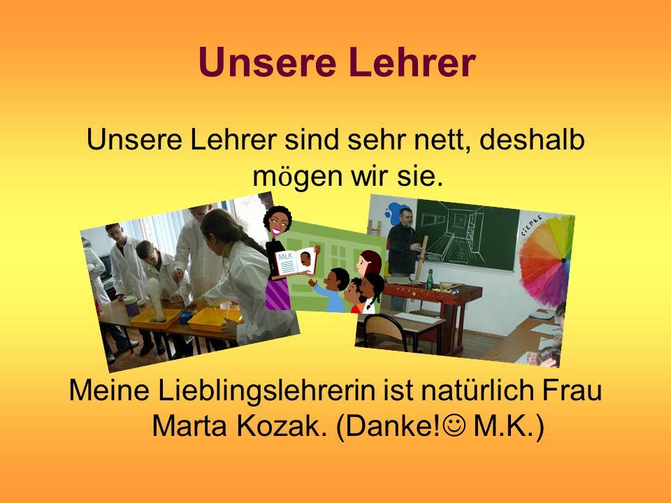 Unsere Lehrer Unsere Lehrer sind sehr nett, deshalb m ӧ gen wir sie.