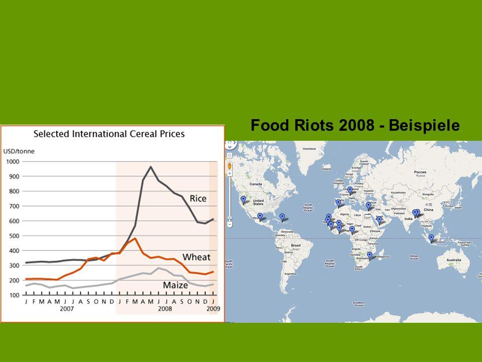 Food Riots 2008 - Beispiele