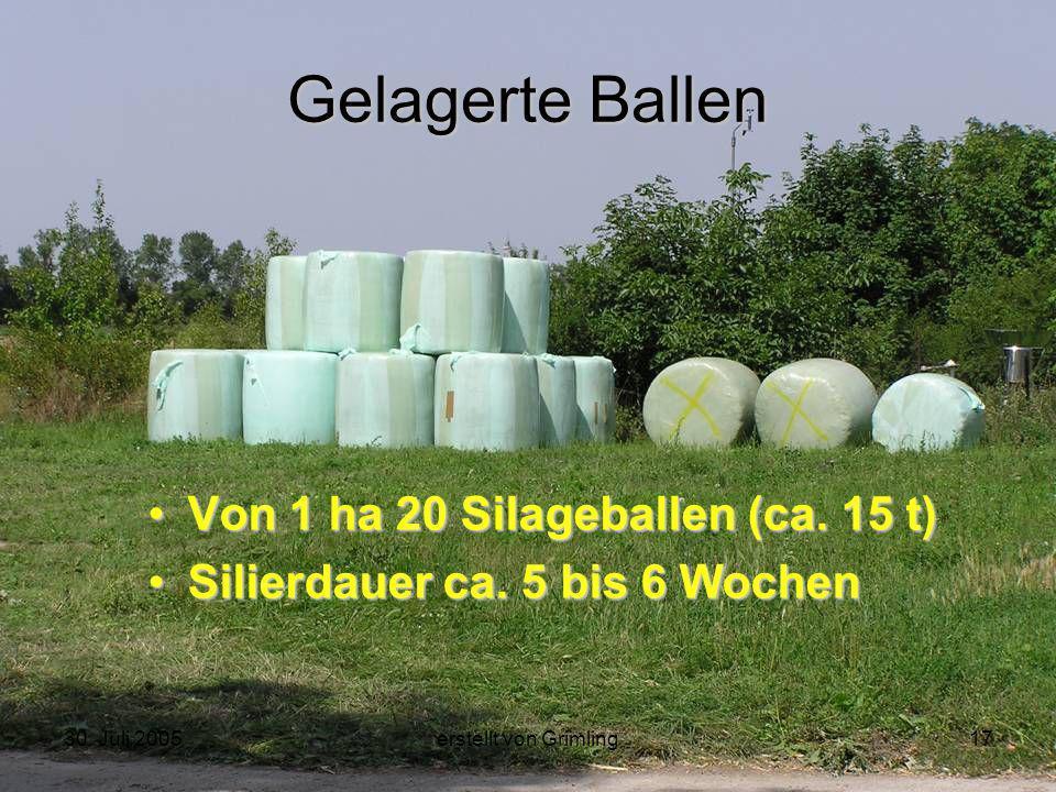 30. Juli 2005erstellt von Grimling17 Gelagerte Ballen Von 1 ha 20 Silageballen (ca. 15 t) Silierdauer ca. 5 bis 6 Wochen