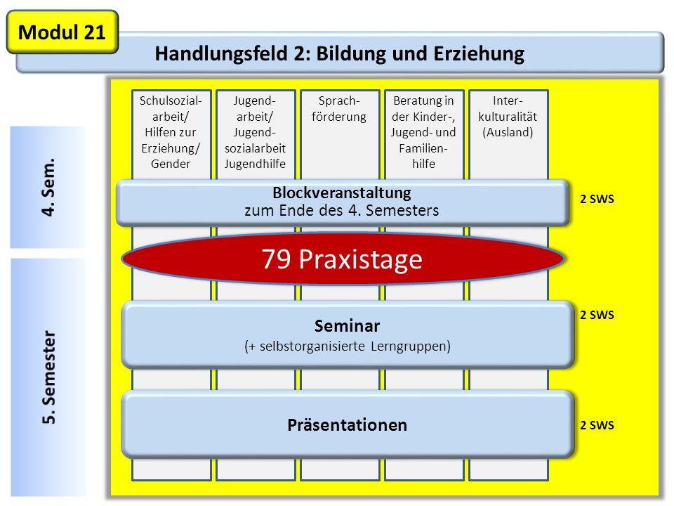 Handlungsfeld 2: Bildung und Erziehung Modul 21 2 SWS Schulsozial- arbeit/ Hilfen zur Erziehung/ Gender Jugend- arbeit/ Jugend- sozialarbeit Jugendhil