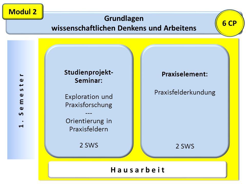 Grundlagen wissenschaftlichen Denkens und Arbeitens Modul 2 Studienprojekt- Seminar: Exploration und Praxisforschung --- Orientierung in Praxisfeldern