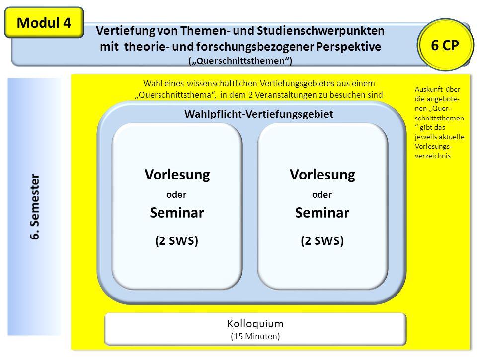 Vertiefung von Themen- und Studienschwerpunkten mit theorie- und forschungsbezogener Perspektive (Querschnittsthemen) Modul 4 Kolloquium (15 Minuten)