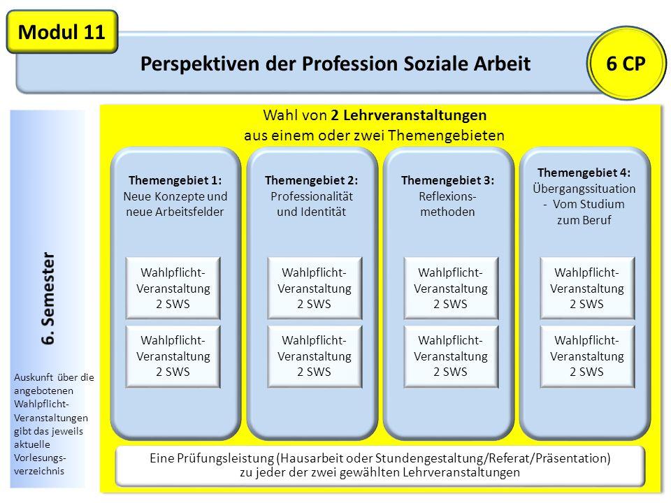 Perspektiven der Profession Soziale Arbeit Modul 11 Themengebiet 1: Neue Konzepte und neue Arbeitsfelder Wahlpflicht- Veranstaltung 2 SWS Wahl von 2 L