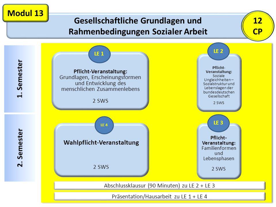 Gesellschaftliche Grundlagen und Rahmenbedingungen Sozialer Arbeit Modul 13 Pflicht-Veranstaltung: Grundlagen, Erscheinungsformen und Entwicklung des