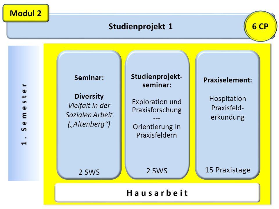 Studienprojekt 1 Modul 2 Studienprojekt- seminar: Exploration und Praxisforschung --- Orientierung in Praxisfeldern 2 SWS Praxiselement: Hospitation P