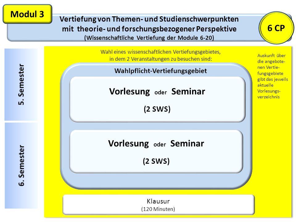 Vertiefung von Themen- und Studienschwerpunkten mit theorie- und forschungsbezogener Perspektive (Wissenschaftliche Vertiefung der Module 6-20) Modul