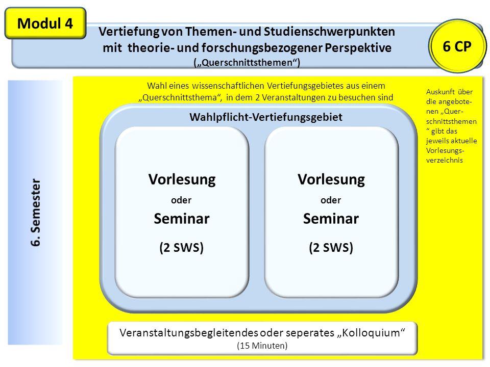 Vertiefung von Themen- und Studienschwerpunkten mit theorie- und forschungsbezogener Perspektive (Querschnittsthemen) Modul 4 Veranstaltungsbegleitend