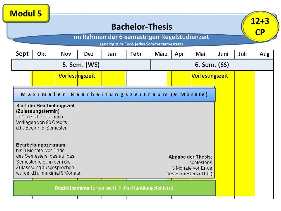 Bachelor-Thesis Modul 5 Vorlesungszeit Sept Okt Nov Dez Jan Febr März Apr Mai Juni Juli Aug 5. Sem. (WS)6. Sem. (SS) M a x i m a l e r B e a r b e i t