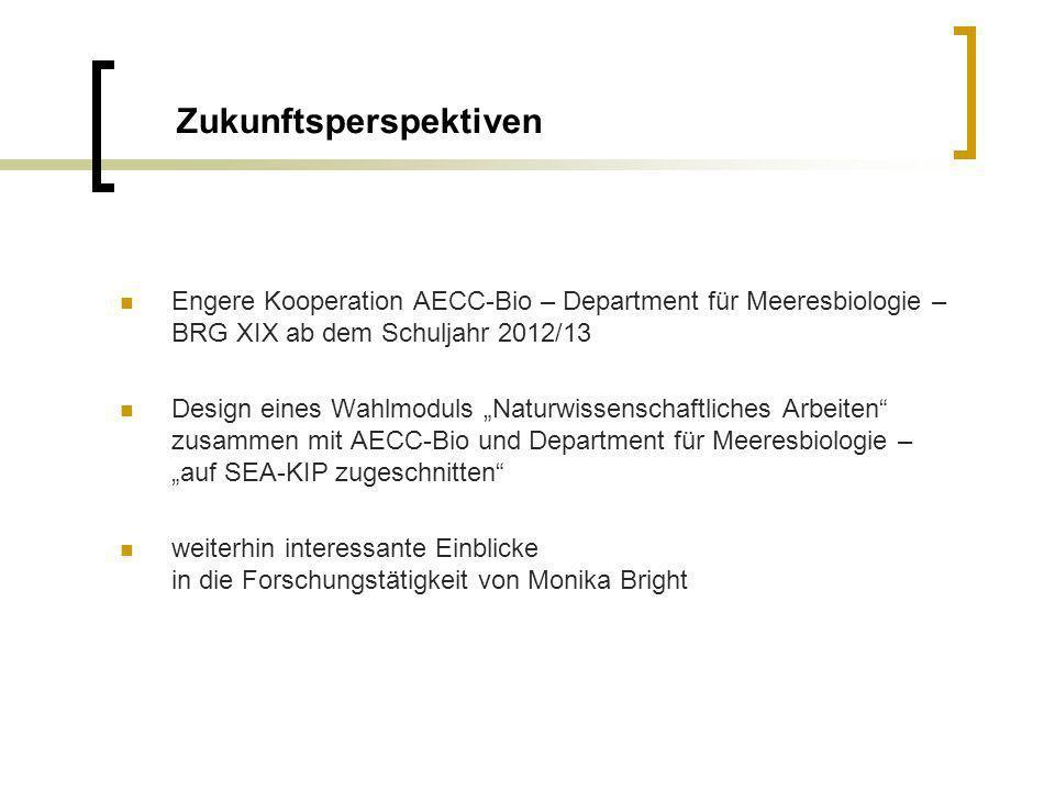 KiP 2 – Finissage, 4.Mai 2012 Christine Heidinger Herzlichen Dank an das SEA-KiP Team.