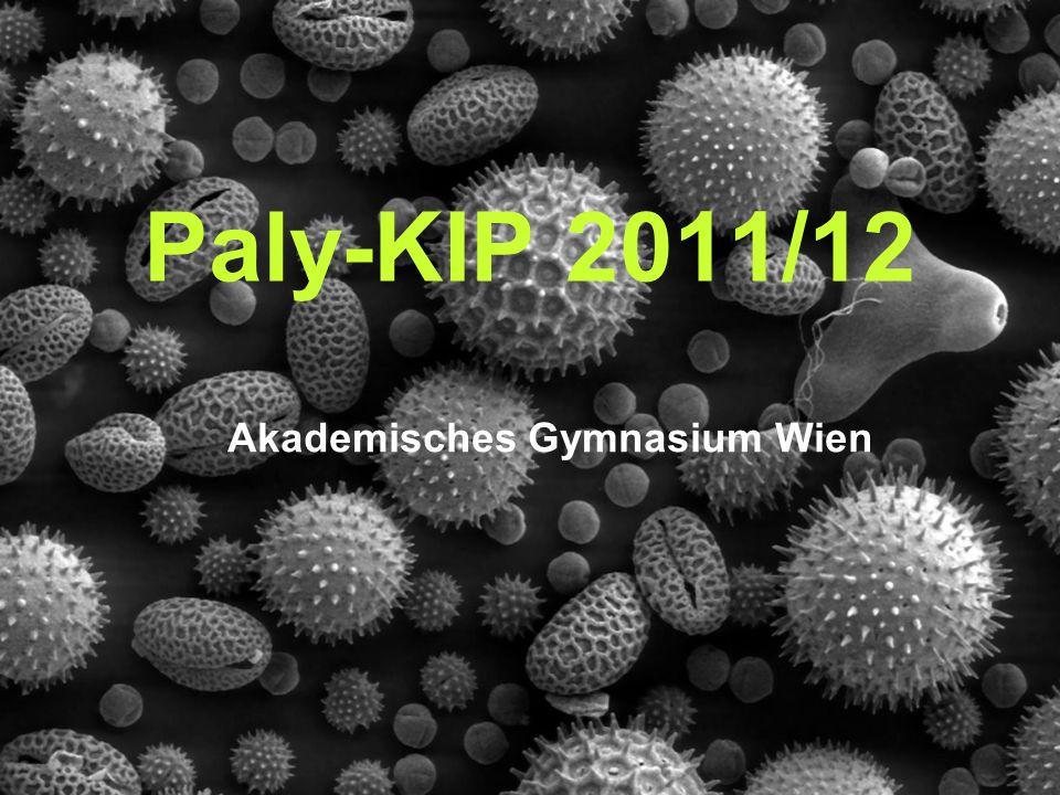 Akademisches Gymnasium Wien Paly-KIP 2011/12
