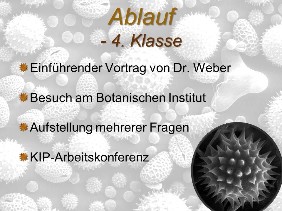 Ablauf - 4. Klasse Einführender Vortrag von Dr. Weber Besuch am Botanischen Institut Aufstellung mehrerer Fragen KIP-Arbeitskonferenz
