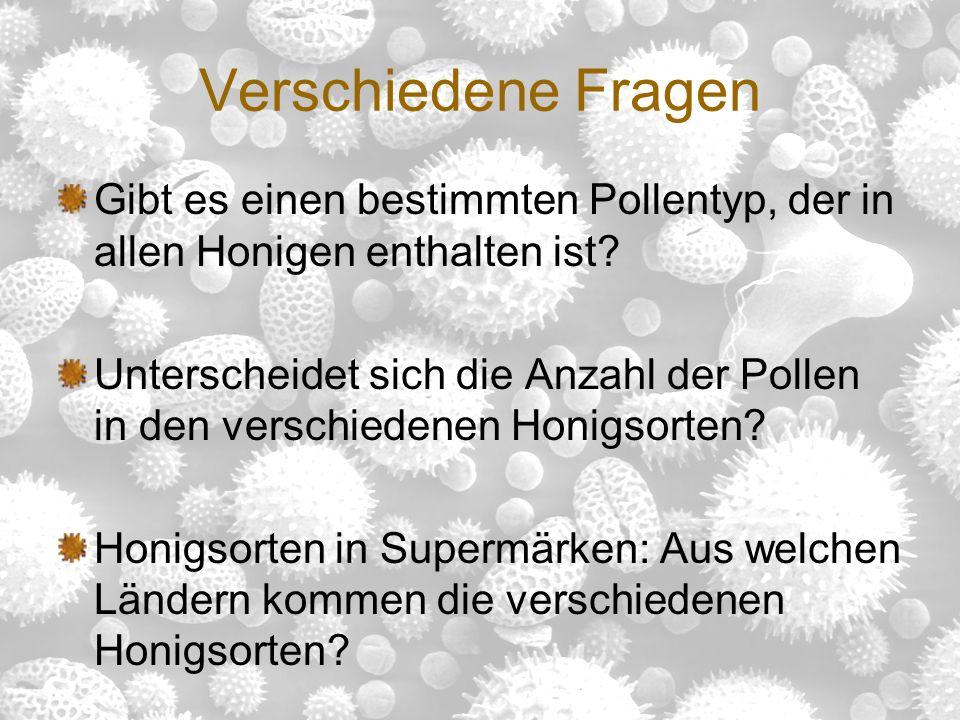 Helene Rosenberg Adriana Eichmann Linda Romstorfer erstellt von &