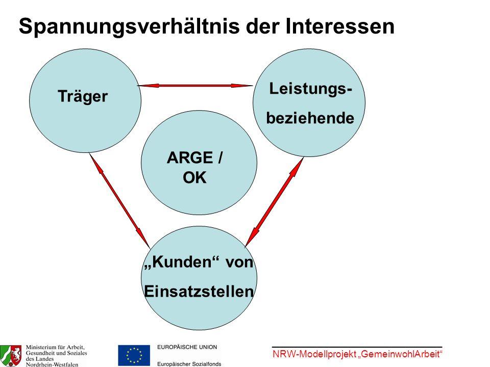 ________________________________ NRW-Modellprojekt GemeinwohlArbeit Entwickelt ein Handbuch und Qualifizierungsmodule zu verschiedenen Modulen und zentralen Prozessen in der Umsetzung von Arbeitsgelegenheiten Weist auf Schwachstellen hin, formuliert Empfehlungen