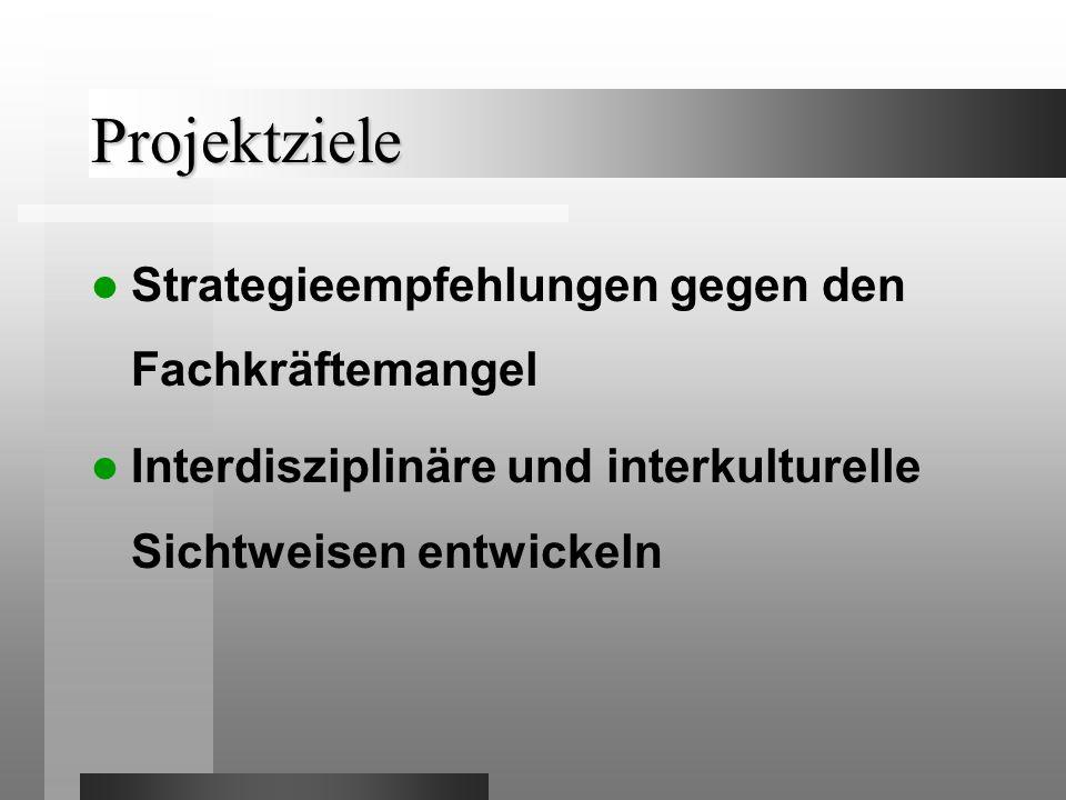 Projektziele Strategieempfehlungen gegen den Fachkräftemangel Interdisziplinäre und interkulturelle Sichtweisen entwickeln