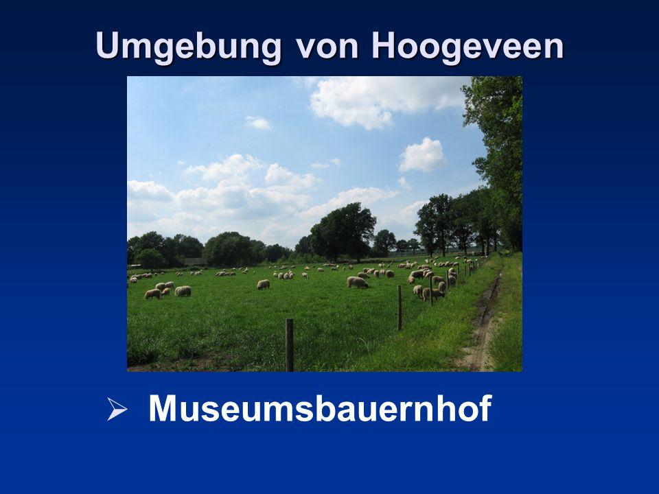 Umgebung von Hoogeveen Museumsbauernhof