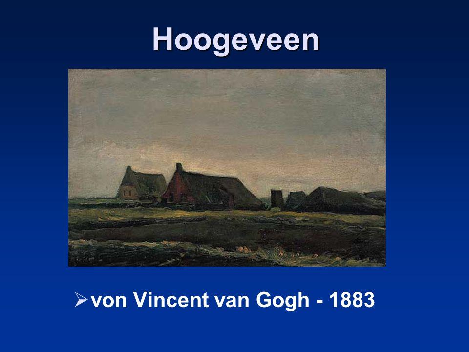 Hoogeveen von Vincent van Gogh - 1883