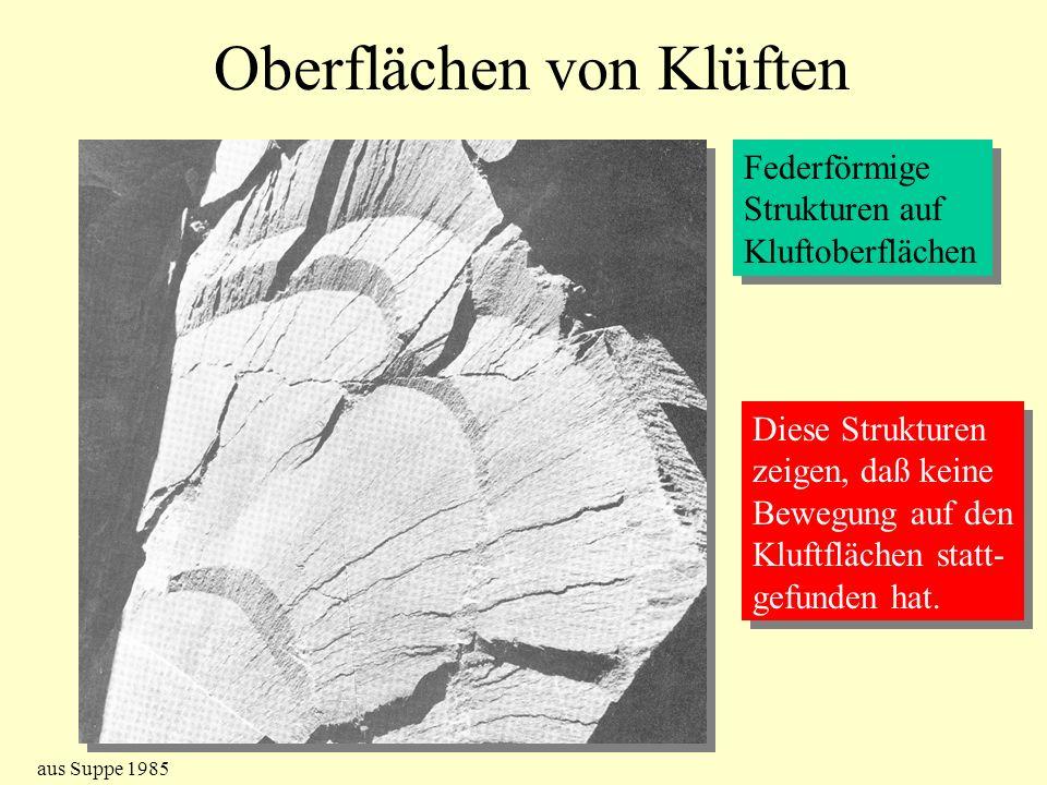 Oberflächen von Klüften Federförmige Strukturen auf Kluftoberflächen Federförmige Strukturen auf Kluftoberflächen Diese Strukturen zeigen, daß keine B