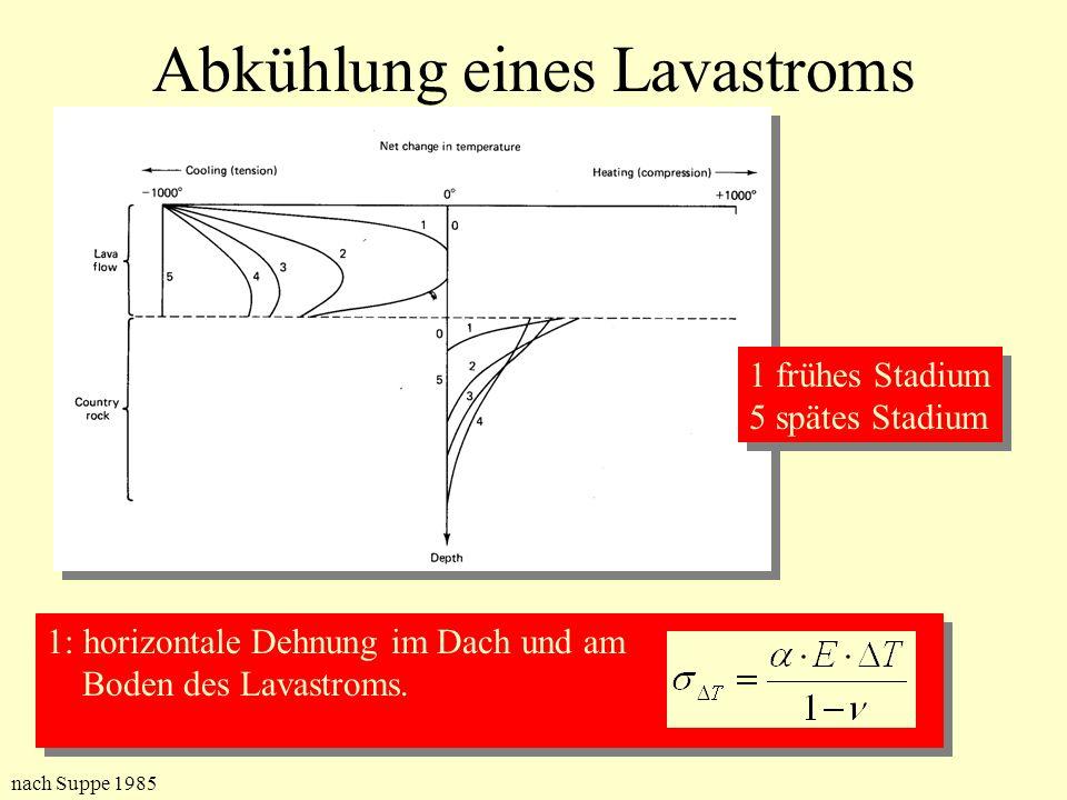 Abkühlung eines Lavastroms 1 frühes Stadium 5 spätes Stadium 1 frühes Stadium 5 spätes Stadium 1: horizontale Dehnung im Dach und am Boden des Lavastr