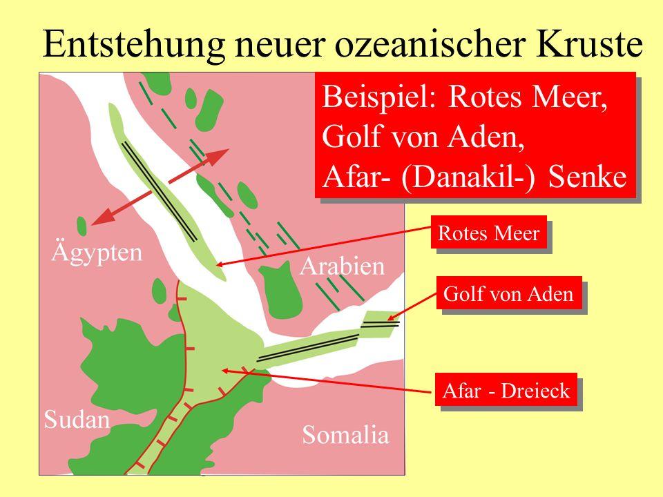Entstehung neuer ozeanischer Kruste Beispiel: Rotes Meer, Golf von Aden, Afar- (Danakil-) Senke Beispiel: Rotes Meer, Golf von Aden, Afar- (Danakil-)