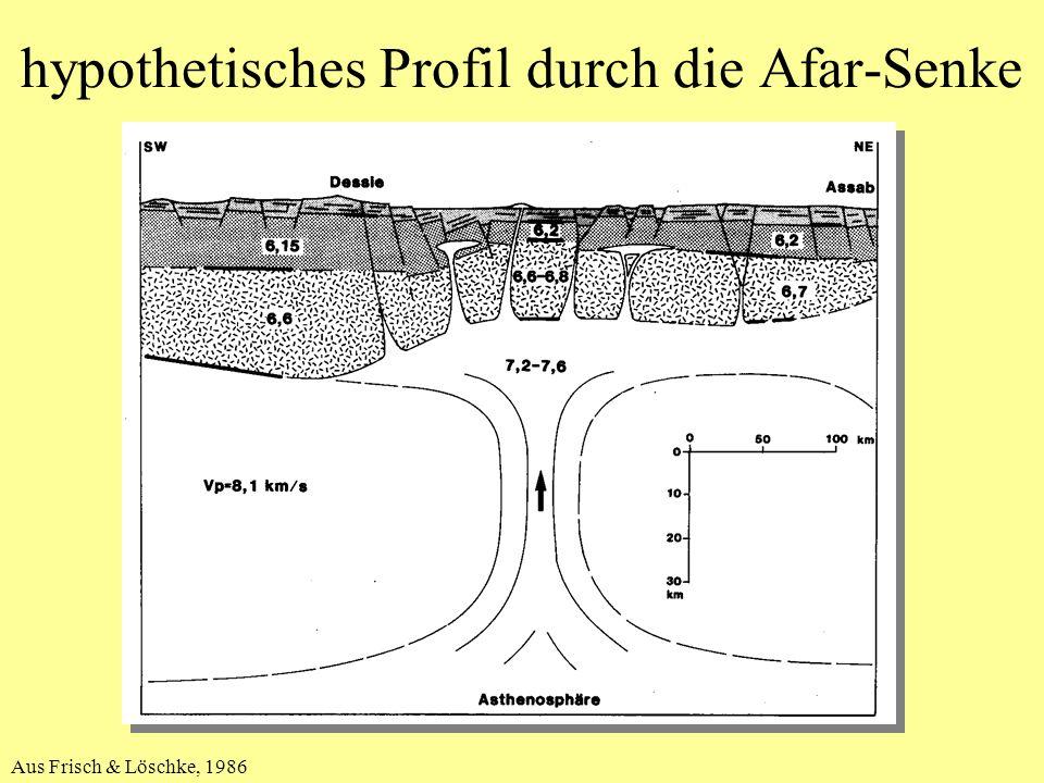 hypothetisches Profil durch die Afar-Senke Aus Frisch & Löschke, 1986