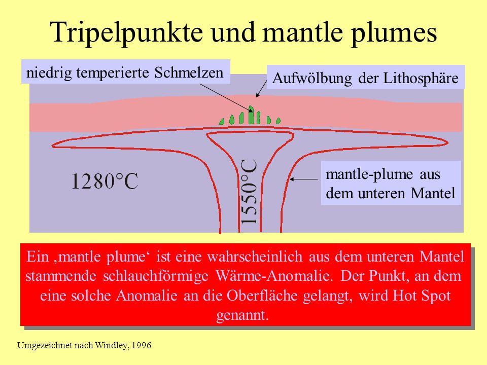 Bildung eines mittelozeanischen Rückens 2. Stadium