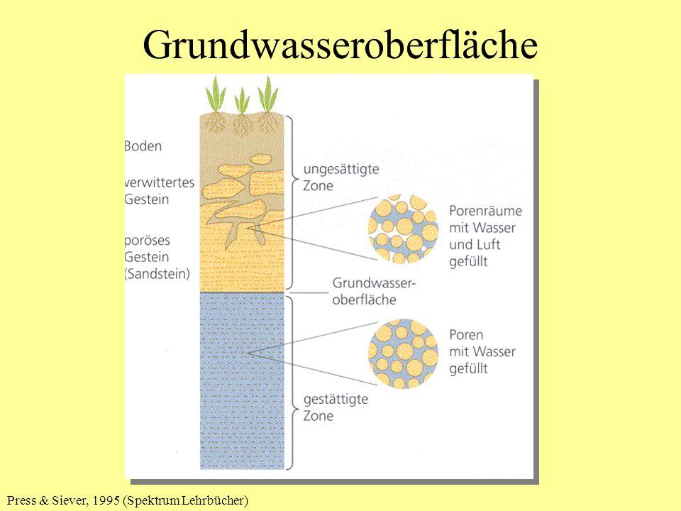 Grundwasseroberfläche Press & Siever, 1995 (Spektrum Lehrbücher)