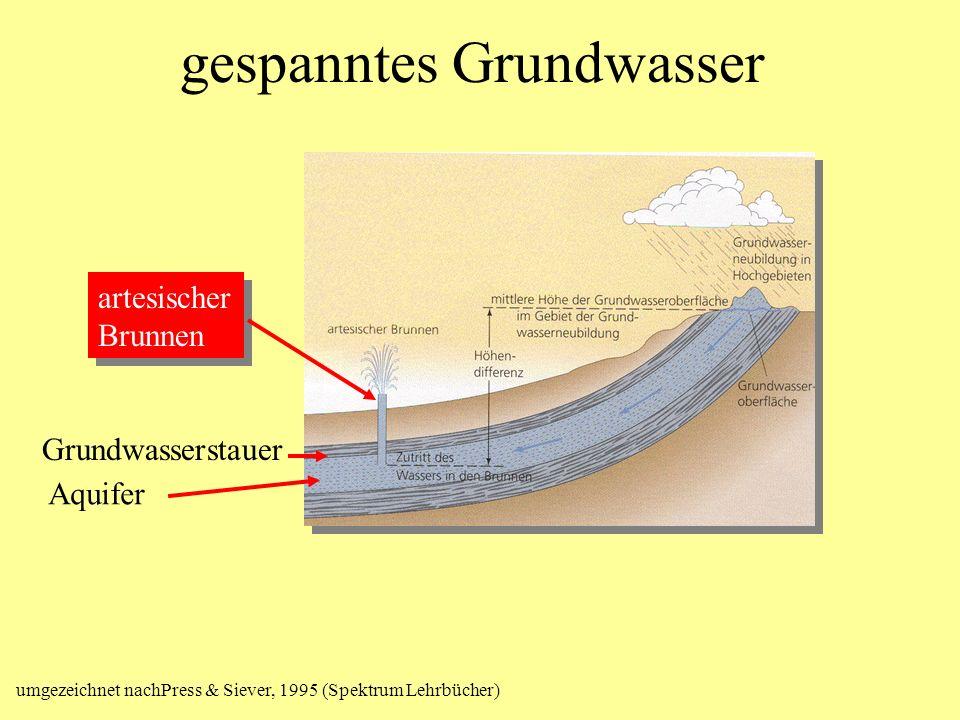 gespanntes Grundwasser Grundwasserstauer Aquifer artesischer Brunnen artesischer Brunnen umgezeichnet nachPress & Siever, 1995 (Spektrum Lehrbücher)