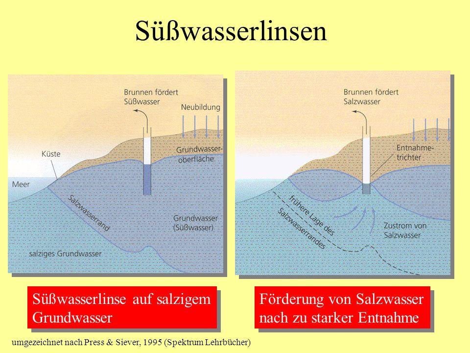 Süßwasserlinsen Süßwasserlinse auf salzigem Grundwasser Süßwasserlinse auf salzigem Grundwasser Förderung von Salzwasser nach zu starker Entnahme Förd