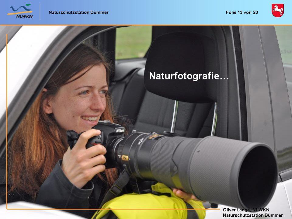 Naturschutzstation Dümmer Oliver Lange, NLWKN Naturschutzstation Dümmer Oliver Lange, NLWKN Naturschutzstation Dümmer Naturfotografie… Folie 13 von 20